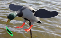 Duck Decoy Action Flutter-Wing Pull String